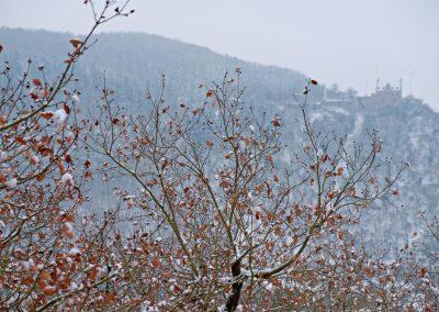 Altenbaumburg im Winter2