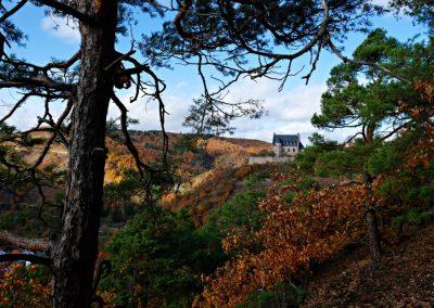 Blick auf die Altenbaumburg